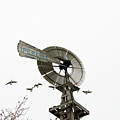 Windmill And Geese by David Arment