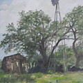 Windmill At Genhaven by Connie Schaertl