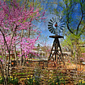 Windmill At The Garden by Marty Koch