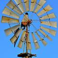 Windmill by Bridgette Gomes