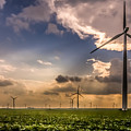 Windmill Farm by Ron Pate