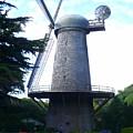 Windmill In Golden Gate Park by Carol Groenen