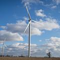 Windmill by Lee Richardson
