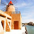 Windmill On Canal - Trapani Salt Flats by Kayme Clark