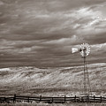 Windmill Sepia by Anthony Bonafede