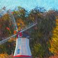 Windmill Series 1102 by Carlos Diaz