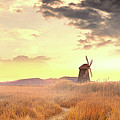 Windmills by Alexander Vershinin