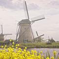 Windmills by Timothy Hacker