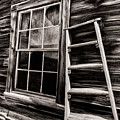 Window And Ladder by Blake Richards
