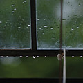 Window And Raindrops-2 by Steve Somerville