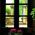 Window And Roses by Joan  Minchak