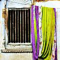 Window And Sari by Derek Selander