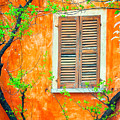 Window And Tree by Silvia Ganora