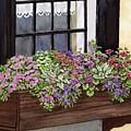 Window Box by Linda Hoover