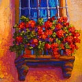 Window Box  by Marion Rose