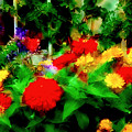 Window Box Of Flowers by Gary Brandes
