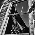 Window But No Roof by Blake Richards