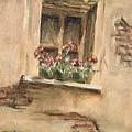 Window by Faye Tracy