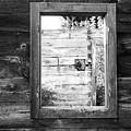Window Frame by Helena Jajcevic