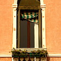 Window In Venice by Michael Henderson
