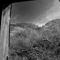 Window by John Gee