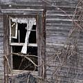 Window Of Loneliness by Douglas Barnett