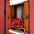 Window On Burano by Nathaniel Dickert