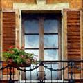Window Shutters And Flowers I by Ronald Bolokofsky