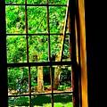 Window To My World by Ian  MacDonald