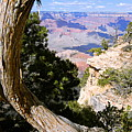 Window To The Past 21 - Grand Canyon by Larry Ricker