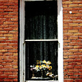 Window To The Past by Edmund Mazzola