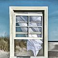 Window With A View by Diane LaPreta