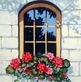 Window With Flower Box by Joyce Geleynse