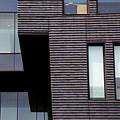 Windows Boxed by Karol Livote