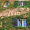 Windows by Munir Alawi