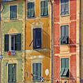 Windows Of Portofino by Joana Kruse