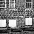 Windows by William Kauffman