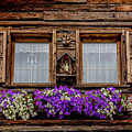 Windows With Flowers by Wolfgang Stocker