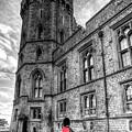 Windsor Castle Coldstream Guard by David Pyatt