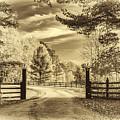 Windstone Farm - Sepia by Steve Harrington