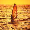 Windsurfer At Sunset by Dave Fleetham - Printscapes