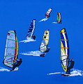 Windsurfers by Frank Hamilton
