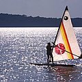 Windsurfing Lake Champlain by George Robinson