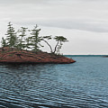 Windswept Island Georgian Bay by Kenneth M  Kirsch