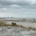 Windswept Lido Beach Florida by Lynn Bolt
