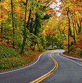 Windy Fall Road In New York by Alissa Beth Photography