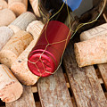 Wine Bottle And Corks by Anastasy Yarmolovich