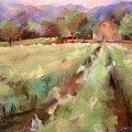 Wine Country 2 by Joan  Jones
