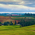 Wine Country by Jon Burch Photography