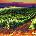 Wine Country by Mike Massengale